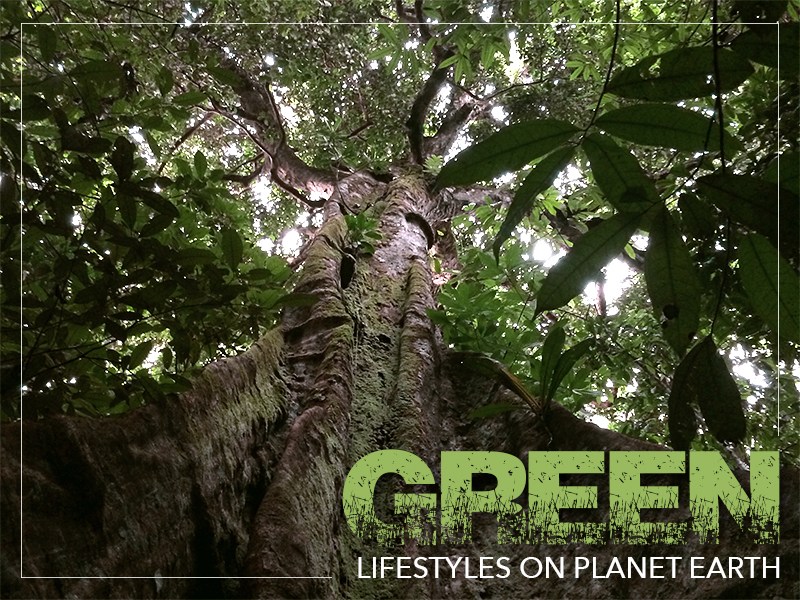 Green Lifestyles on Paradise Earth